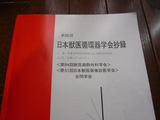 011_convert_20120611173859.jpg