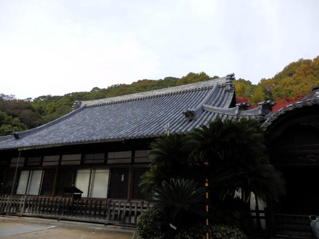 禅昌寺 (5)
