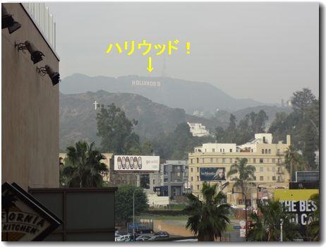 20121205hallywood.jpg