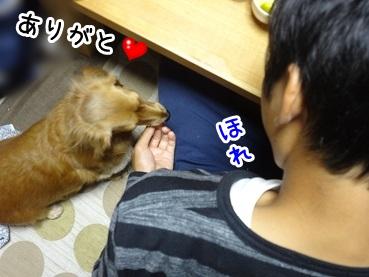 kinako1071.jpg