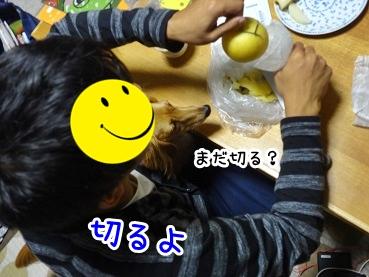kinako1072.jpg