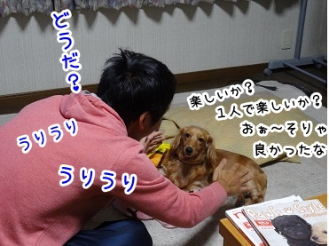 kinako1093.jpg