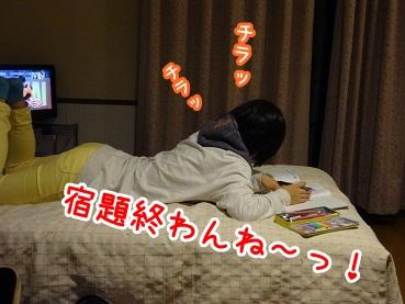 kinako1136.jpg