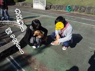 kinako1152.jpg