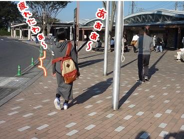 kinako1164.jpg