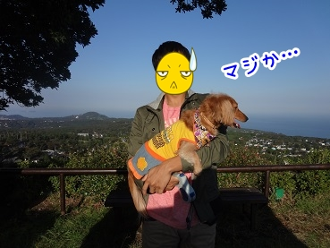 kinako1167.jpg