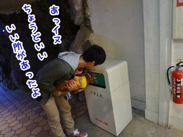 kinako1170.jpg
