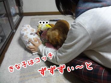 kinako1202.jpg