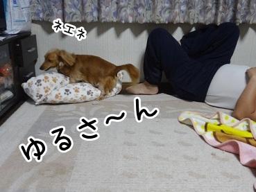 kinako1206.jpg