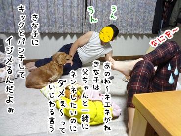 kinako1221.jpg