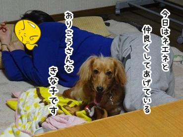 kinako1227.jpg