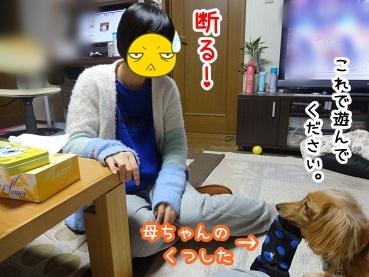 kinako1270.jpg
