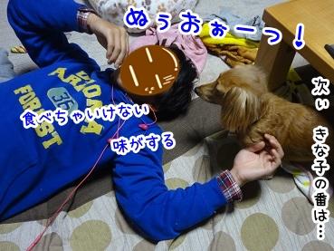 kinako1290.jpg