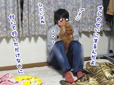 kinako1350.jpg