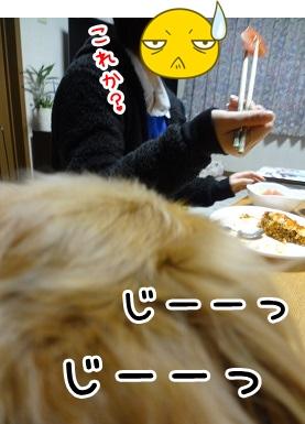 kinako1403.jpg