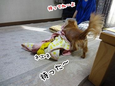 kinako1458.jpg