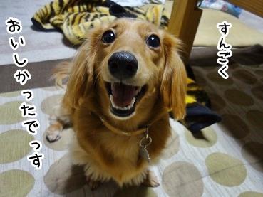 kinako1473.jpg