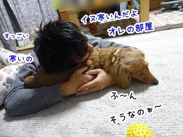 kinako1499.jpg