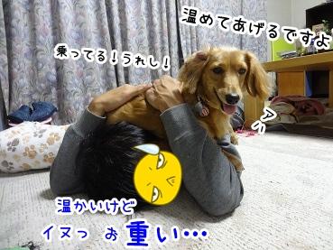 kinako1504.jpg