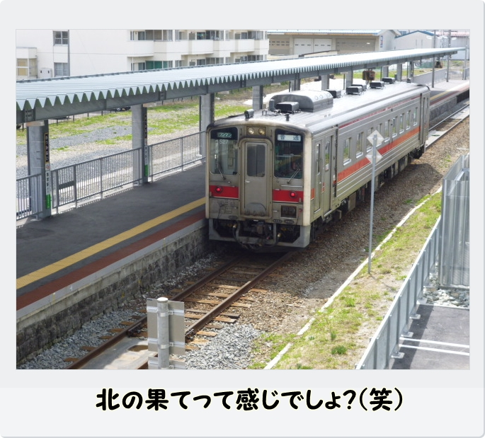 P1020761.jpg