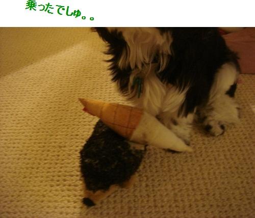 DSC03510moji.jpg