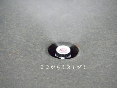 DSCN0152_convert_20120809231307.jpg