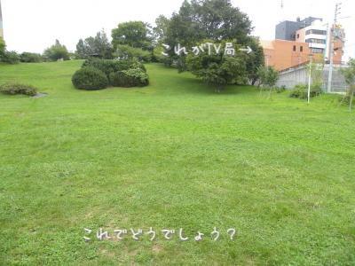 DSCN0508_convert_20120919105701.jpg