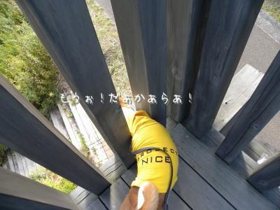 DSCN0599_convert_20121013235345.jpg