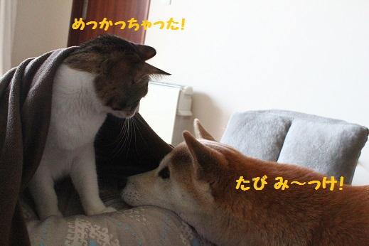 み~っけ?