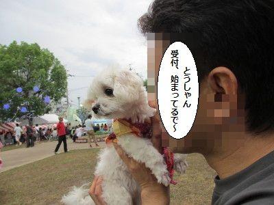 IMG_2827_1とうはじ818992