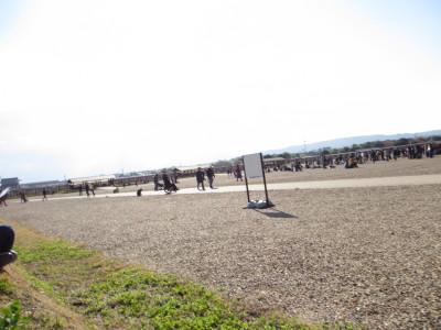 IMG_0213_1hiroba110147.jpg