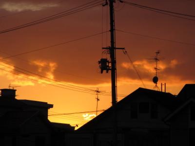 IMG_0273_1yuuihi102114.jpg