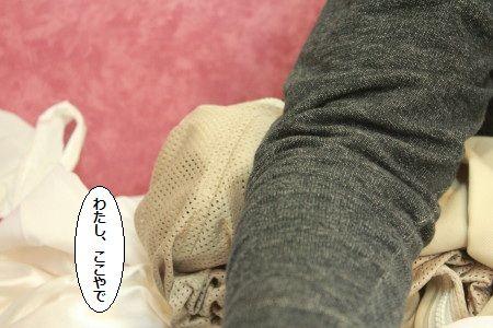 IMG_0661_1watasikoko11025814.jpg