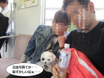 IMG_1491_1hazukasii1.jpg