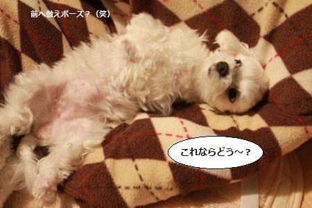 IMG_2011_1konnnanomo2.jpg