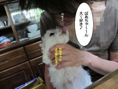 IMG_2518_1baasyuki80512577.jpg