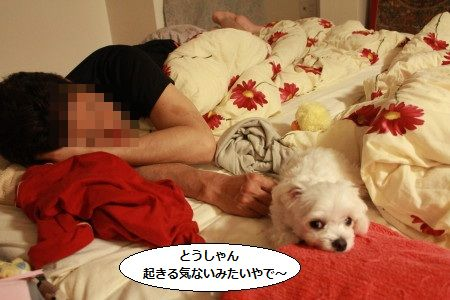 IMG_3484_1touokinai1.jpg