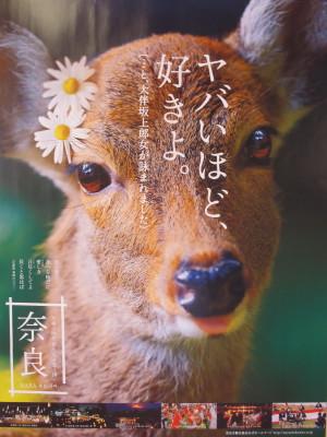 IMG_3848_1yanabaii10200.jpg