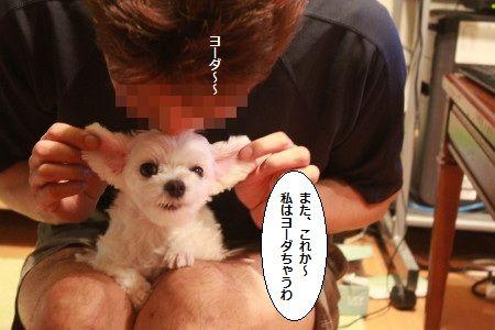 IMG_8944_1yo-da9021112345.jpg