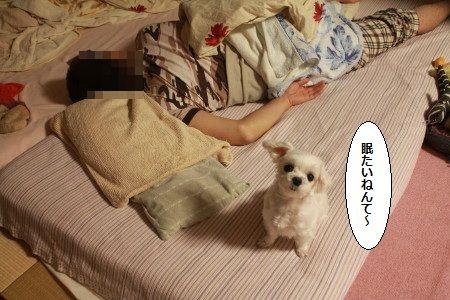 IMG_9764_1watasimuri10001255588.jpg