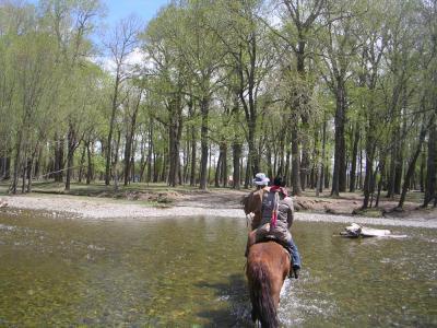 HorseRidinginMongolia12
