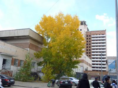 Autumn12_2