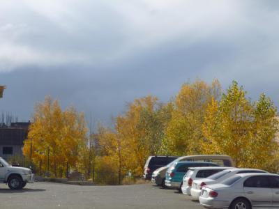 Autumn12_3