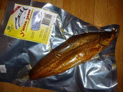 FishinMongolia