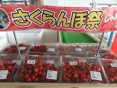 さくらんぼ祭り