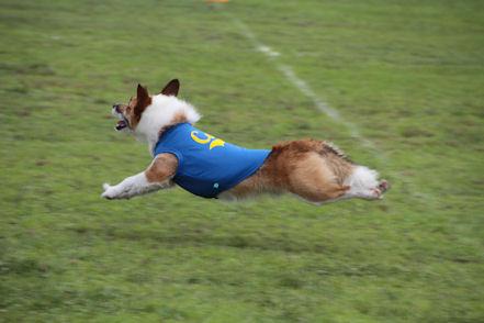 飛びます飛びます♪