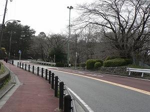 東京 009