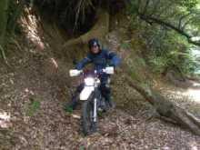 バイク乗りのブログ-倒木(上手い人はフロントアップで越える?)