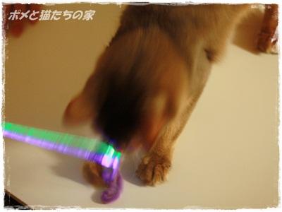 yuki0136.jpg
