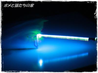 yuki0137.jpg
